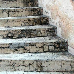 Steadily Climb – Elizabeth Beckmann – USA